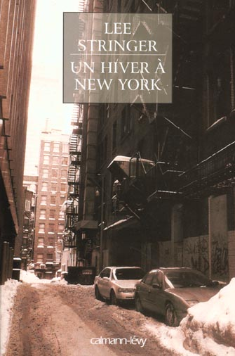 Lee Stringer, Un hiver à New York